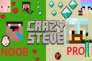 Play CrazySteve.io