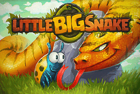 Play Little Big Snake